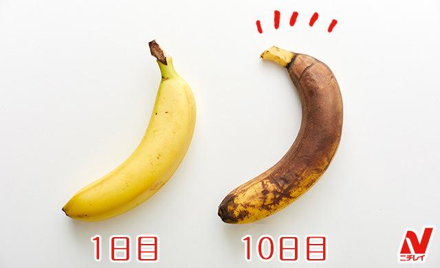 1日目と10日目の比較