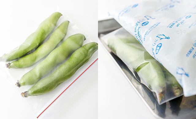 さやごと冷凍用保存袋に入れる/さやをバットと保冷剤でサンド