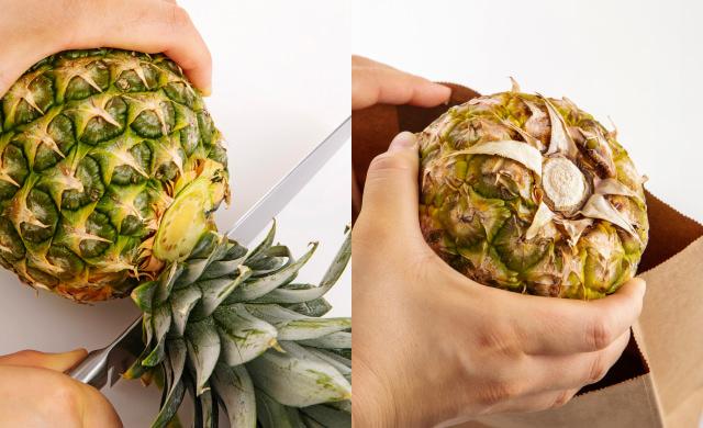パイナップルの葉の軸部分ギリギリを切っている写真(左)パイナップルを逆さにして紙袋に入れている写真(右)