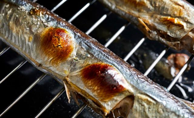 魚焼きグリルで焼いたさんまのヨリ写真