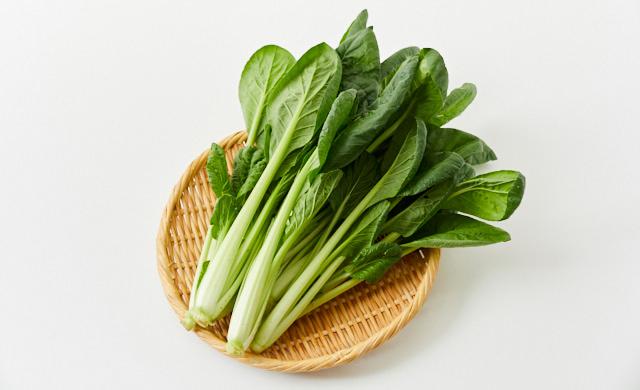 生の小松菜の写真