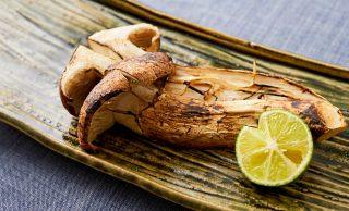 焼き松茸の完成写真