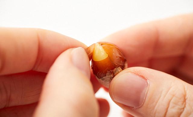 銀杏の実の薄皮をむく写真