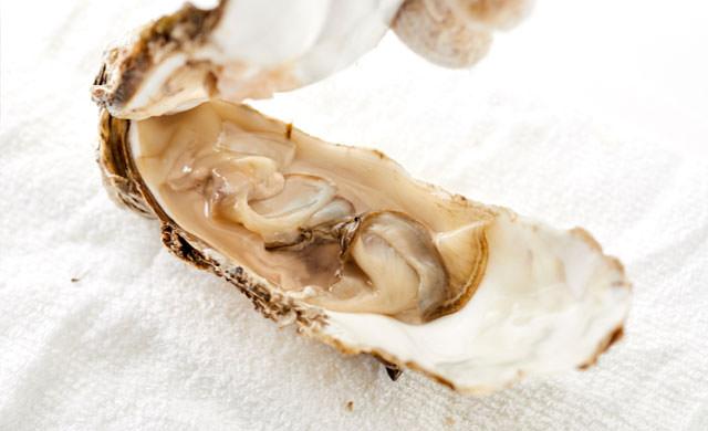 殻付き牡蠣の写真