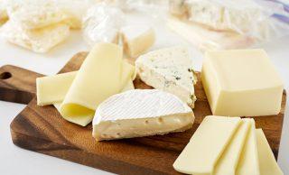 チーズの集合写真