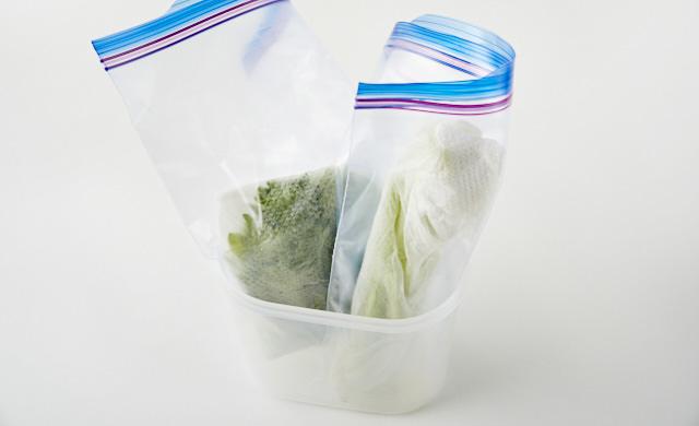 セロリをプラスチックケースに立てて入れている写真