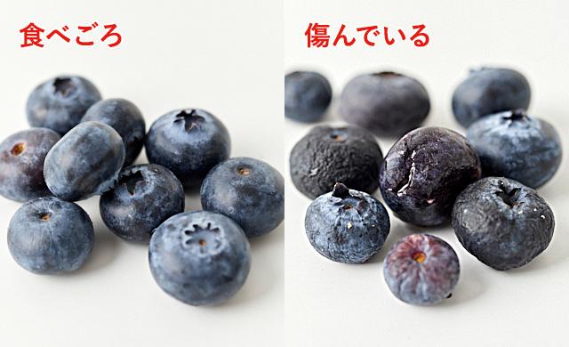 食べごろのブルーベリーの例写真・傷んだブルーベリーの例写真