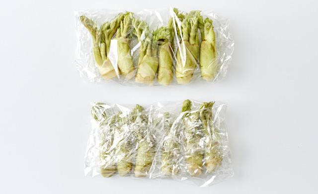 タラの芽をラップで包んだ写真