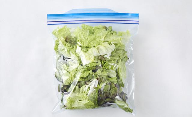 サニーレタスを冷凍用保存袋に入れている写真