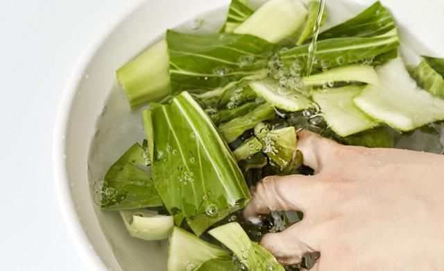 チンゲン菜を洗っている写真