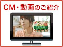 CM・動画のご紹介 深田恭子さん