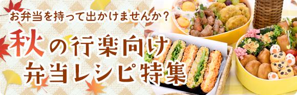 お弁当を持って出かけませんか?秋の行楽向け弁当レシピ特集